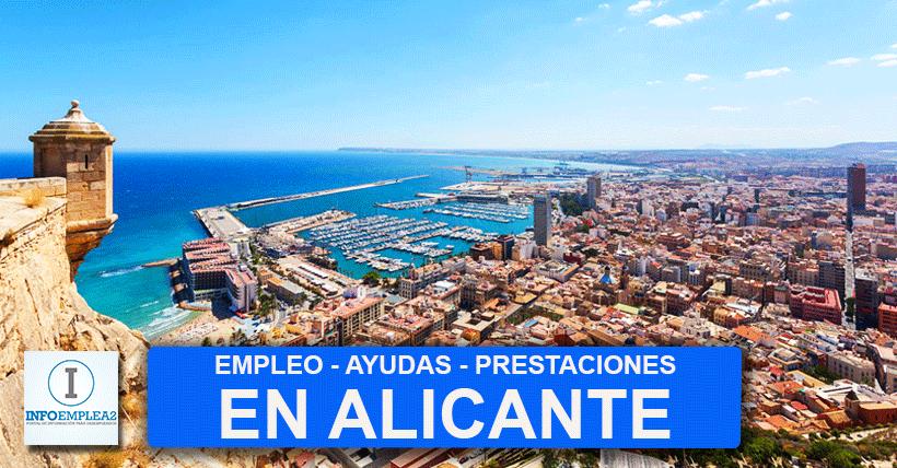 Ofertas de empleo en Alicante
