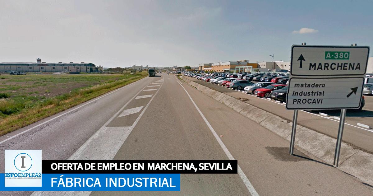 Se necesita Personal para Fábrica en Marchena, Sevilla