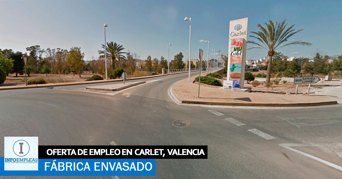 Se necesitan 10 Operarios/as para Fábrica Envasado en Carlet, Valencia