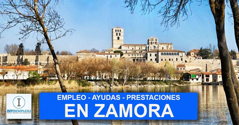 Ofertas de empleo en Zamora