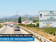peones de invernadero en Vélez-Málaga