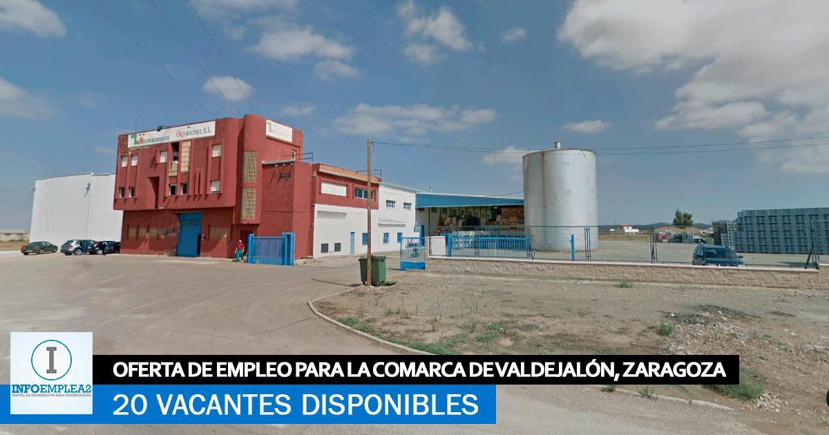 Se Necesita 20 Trabajadores para Fábrica de Envasado en Alfamén, Zaragoza