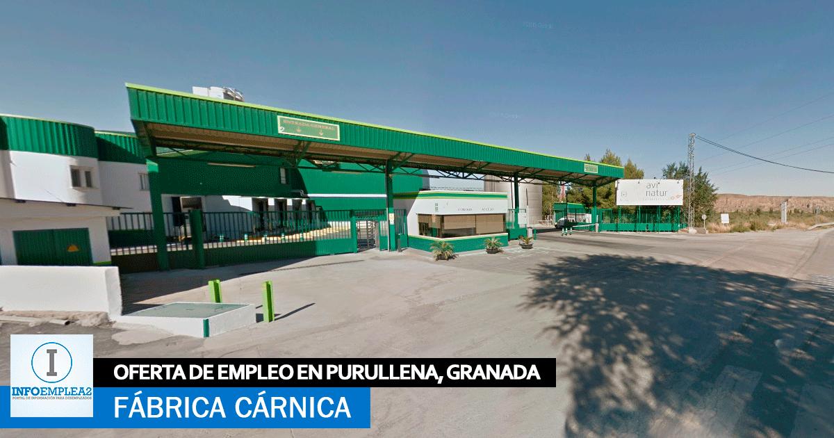 Se Necesitan 30 Trabajadores para Fábrica Cárnica en Purullena, Granada