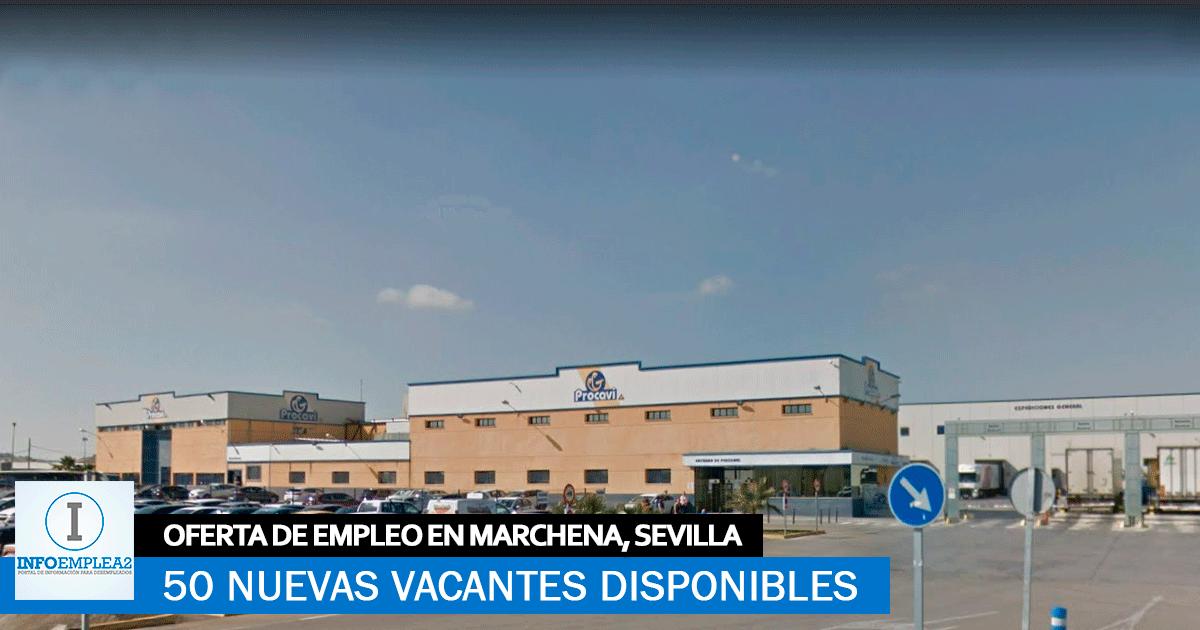 Se necesitan 50 trabajadores para Fábrica Procavi en Marchena, Sevilla