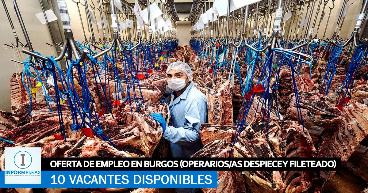 Se Necesita 10 trabajadores en Burgos para Fábrica de Cárnica