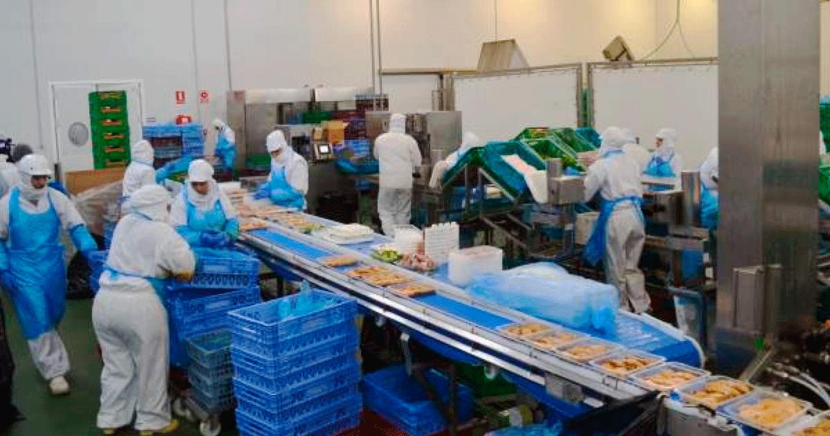Necesitan 30 personas para Empresa Avícola en El Viso del Alcor (Sevilla)