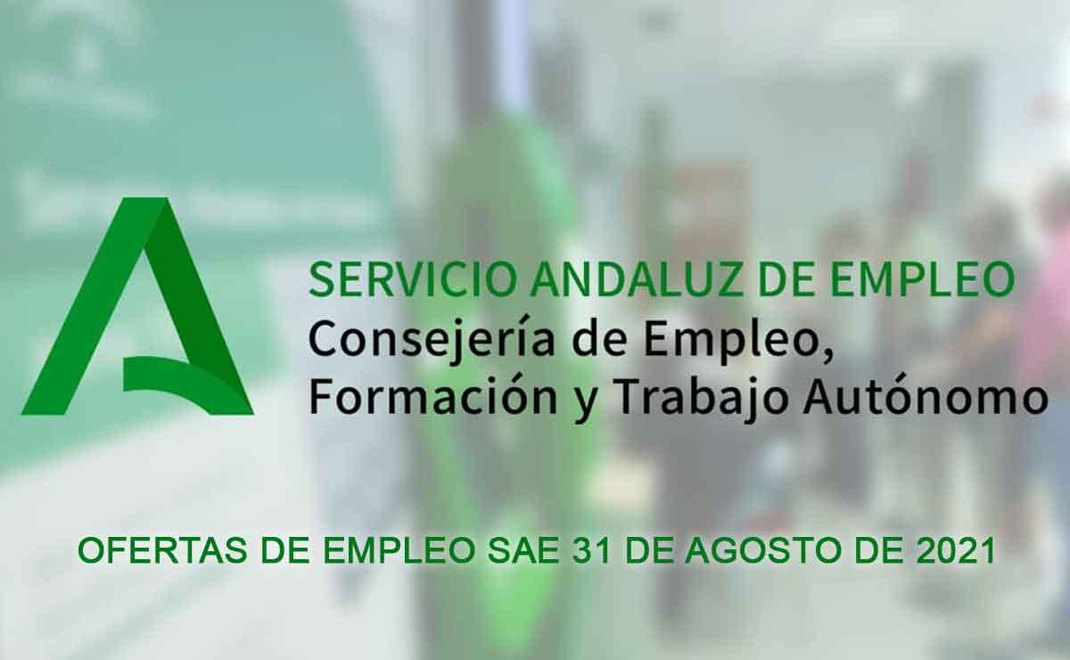 Empleo SAE 31 Agosto