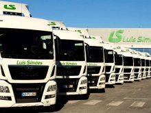 Logistica y transporte Luis Simoes