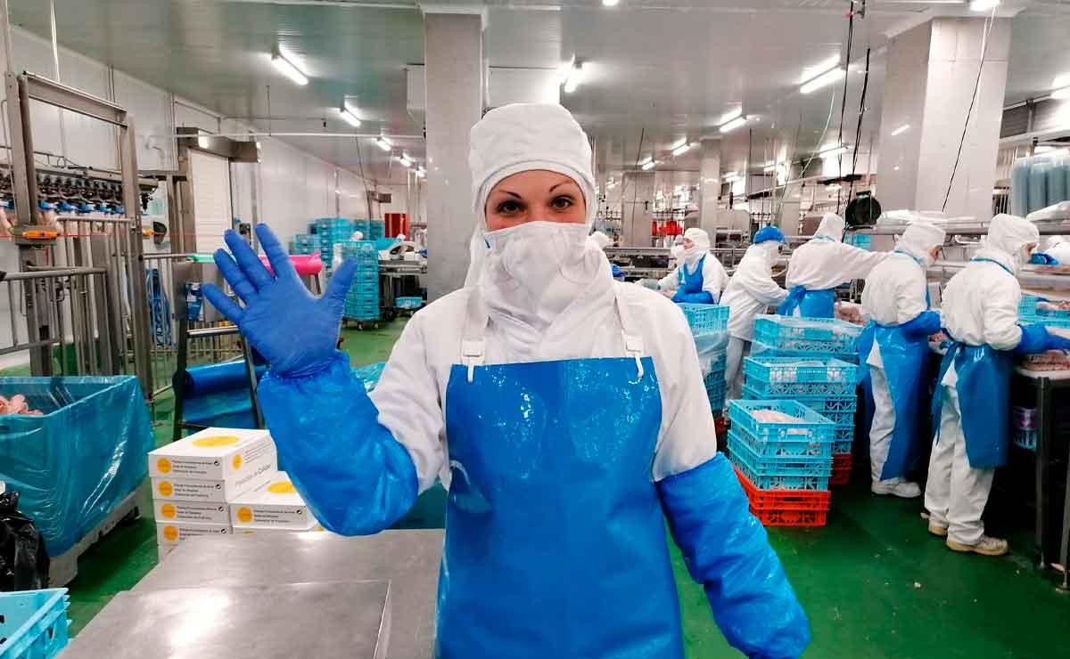 Málaga Fábrica Industrial de Alimentación