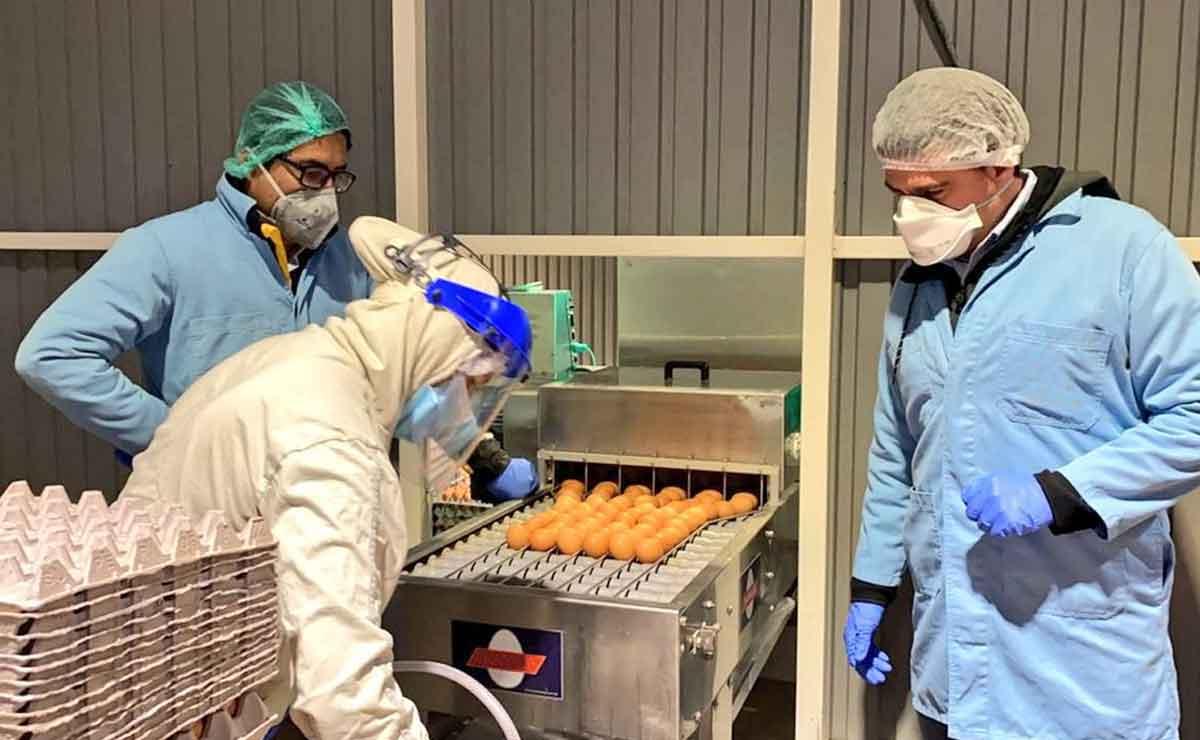 Se necesitan operarios de producción para empresa agroalimentaria en León